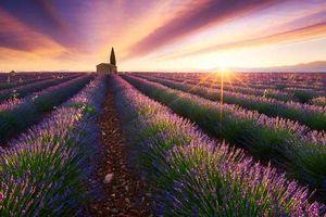 Lóa mắt trước vẻ đẹp của ánh mặt trời khi bao trùm các thắng cảnh khắp hành tinh