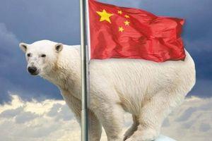 Mỹ sẽ hối thúc các nước chặn chiến thuật Biển Đông của Trung Quốc ở Bắc Cực