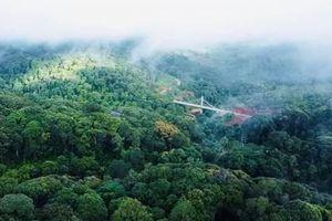 Sẽ thu hồi các dự án đầu tư 'treo' ở Măng Đen, Kon Tum