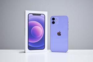 Tưởng chỉ khác nhau về màu sắc, hóa ra iPhone 12 tím còn có điểm khác biệt bất ngờ so với các màu còn lại