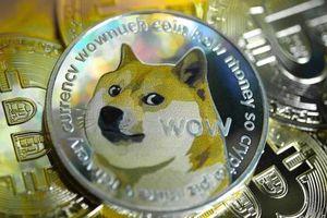 Vốn hóa đạt 90 tỷ USD, 'trò đùa' Dogecoin đang trở nên nghiêm túc trong giới tiền điện tử