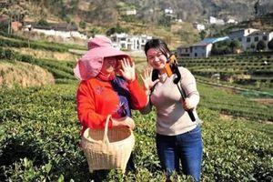 Nhân tài trẻ Trung Quốc lũ lượt trở về quê để tái sinh kinh tế nông thôn