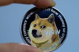 Nhà đầu tư lãi bao nhiêu nếu chi 1.000 USD mua tiền ảo Dogecoin đầu năm nay?