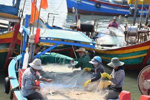 Hỗ trợ ngư dân chuyển đổi nghề đánh bắt thủy sản