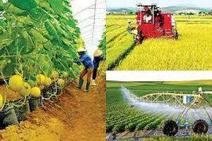Kinh nghiệm về chuyển dịch cơ cấu kinh tế nông nghiệp theo hướng xuất khẩu bền vững của một số địa phương ở trong và ngoài nước và bài học cho tỉnh Thái Bình