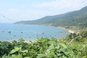 Đà Nẵng định lại giá đất ba dự án trên bán đảo Sơn Trà