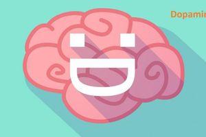 5 hormone hạnh phúc tạo hóa giấu bên trong chúng ta