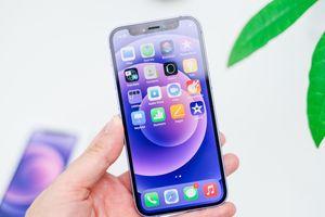 iPhone 12 màu tím là thiết bị đầu tiên sử dụng series ngẫu nhiên