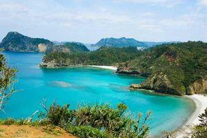 Khám phá Ogasawara - Quần đảo thần bí bao trùm màu xanh ở Nhật Bản