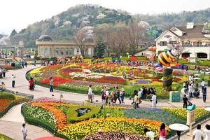 Khám phá nét đặc sắc Everland - Công viên gia đình đầu tiên ở Hàn Quốc
