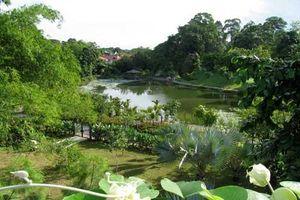Vườn Bách thảo - Di sản thế giới đầu tiên của Singapore