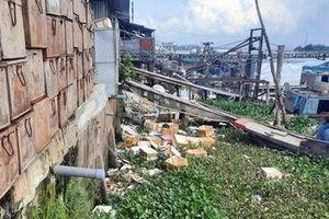 Xử lý chợ đầu mối thủy hải sản xả thải trực tiếp ra sông Hậu