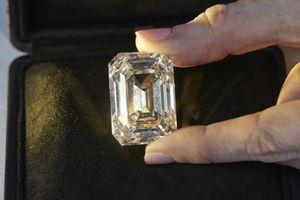 Viên kim cương 101 carat được bán đấu giá