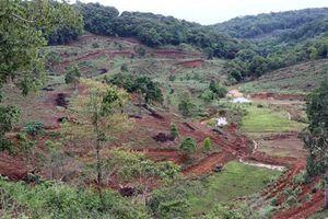 Tỉnh Kon Tum xem xét thu hồi các dự án đầu tư 'treo' ở Măng Đen