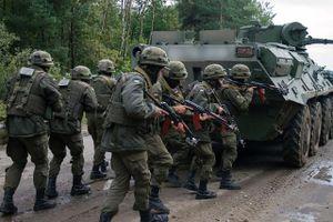 Kiev yêu cầu Mỹ mở rộng sứ mệnh huấn luyện quân sự ở Ukraine