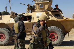 Mỹ, EU hối thúc nối lại hòa đàm nhanh chóng, 'không có điều kiện tiên quyết' tại Afghanistan