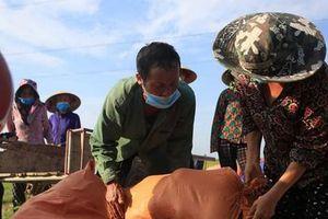'Giải cứu' hàng chục tấn dưa cho người dân bị phong tỏa do dịch