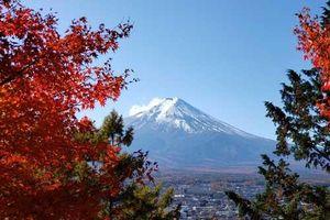 Nét êm dịu và quyến rũ bất tận của mùa Thu Nhật Bản