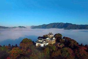 Tòa lâu đài hùng vĩ ở Nhật Bản chỉ xuất hiện 10 lần trong 1 năm