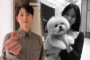 'Vợ chồng' Song Hye Kyo - Song Joong Ki tiếp tục gây bão MXH: Ai sẽ chiến thắng?