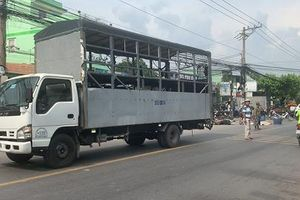 Người đàn ông tử vong tại chỗ sau tai nạn liên hoàn giữa 2 xe máy và xe tải