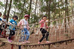Hà Nội: Không tổ chức các hoạt động tham quan, ngoại khóa, trải nghiệm sáng tạo cho học sinh