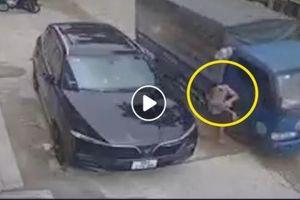 Người đàn ông mải nghe điện thoại bị gương xe tải 'đẩy' ngã