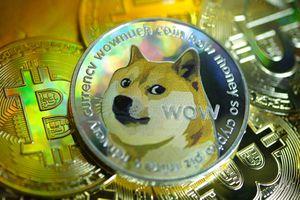 Một cá nhân sở hữu 23 tỷ USD Dogecoin