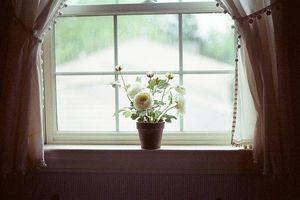 Thơ viết bên cửa sổ