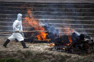 Thế giới tuần qua: Châu Á lao đao trong đại dịch COVID-19; G7 tái xuất giải quyết vấn đề nóng