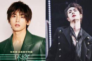 Doanh thu ca khúc của Trương Triết Hạn quá kém dù Cung Tuấn và 'Lãng lãng đinh' đã ủng hộ hết mình?