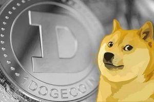 28% lượng Dogecoin đang lưu được sở hữu bởi một nhà đầu tư bí ẩn