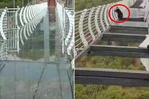 Cầu kính cao 100 mét ở Trung Quốc bất ngờ bị gió thổi bay nhiều mảnh khiến du khách sợ hãi