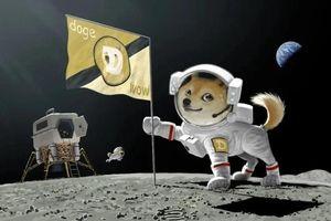 SpaceX chấp nhận thanh toán bằng Dogecoin để giao hàng vũ trụ