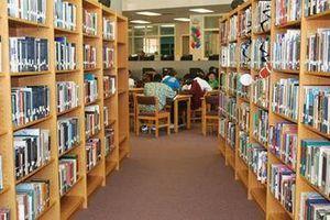 Phát huy vai trò của thư viện công cộng cấp tỉnh