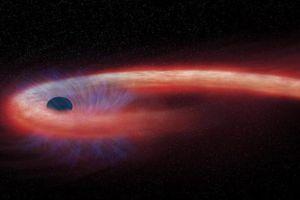 Kinh hãi ngôi sao hình... sợi mì, quấn chặt lỗ đen 'quái vật'