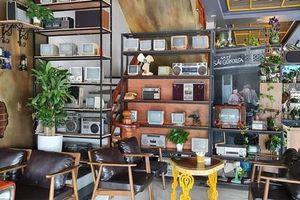 Quán cà phê không gian xanh - 'rừng hoa thu nhỏ' giữa lòng Bắc Ninh của ông chủ 8X