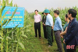 Hà Tĩnh ứng dụng khoa học và công nghệ nâng cao giá trị nông sản