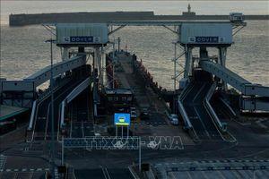 Anh đưa ra khuyến cáo đối với doanh nghiệp hoạt động tại cảng tự do