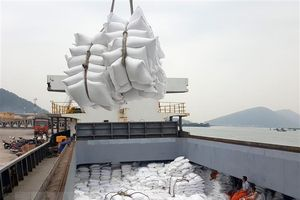 Bộ Nông nghiệp Mỹ dự báo Việt Nam sẽ tiếp tục đứng thứ 2 về xuất khẩu gạo