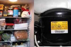 5 dấu hiệu bất thường của tủ lạnh báo hiệu cần sửa sớm để tránh những nguy hiểm