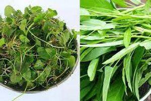 6 loại rau có tính mát, thanh nhiệt giải độc rất tốt vào mùa hè nóng nực