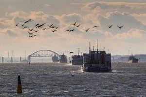Chuyên gia Nga: Eo biển Kerch đã phá tan giấc mơ của Ukraine và NATO