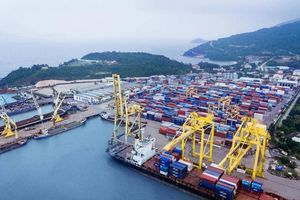 Nhờ đâu cảng biển Việt Nam lột xác sau hai thập kỷ?