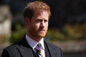 'Hoàng tử Harry chỉ có thể hàn gắn William chừng nào hiểu tổn thương của anh trai'