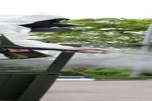 Hòa Bình: F1 về từ Bệnh viện K tử vong khi cách ly tập trung