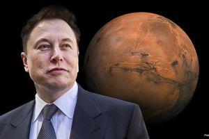 Cuốn sách năm 1953 dự đoán 'Elon' đưa con người lên sao Hỏa