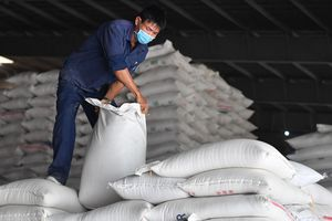 Philippines nhập nhiều gạo Việt Nam