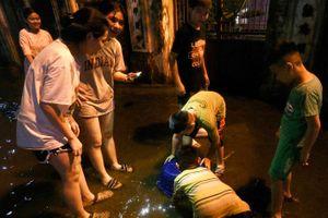 Bắt cá giữa đường sau mưa ngập ở Hà Nội