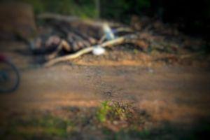 Hà Tĩnh: Phát hiện thi thế người đàn ông chết cháy dưới chân núi